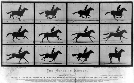 Muybridge Photographs of Motion